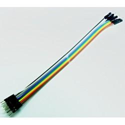 Cable de Conexión Rápida 20cm M-M
